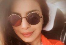 Priyanka Chopra deletes offensive Holocaust Memorial selfies after backlash
