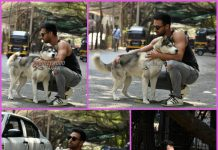 Pulkit Samrat poses with his dog Drogo